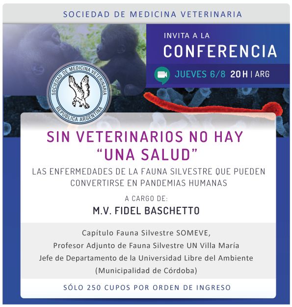 web Conferencia SOMEVE